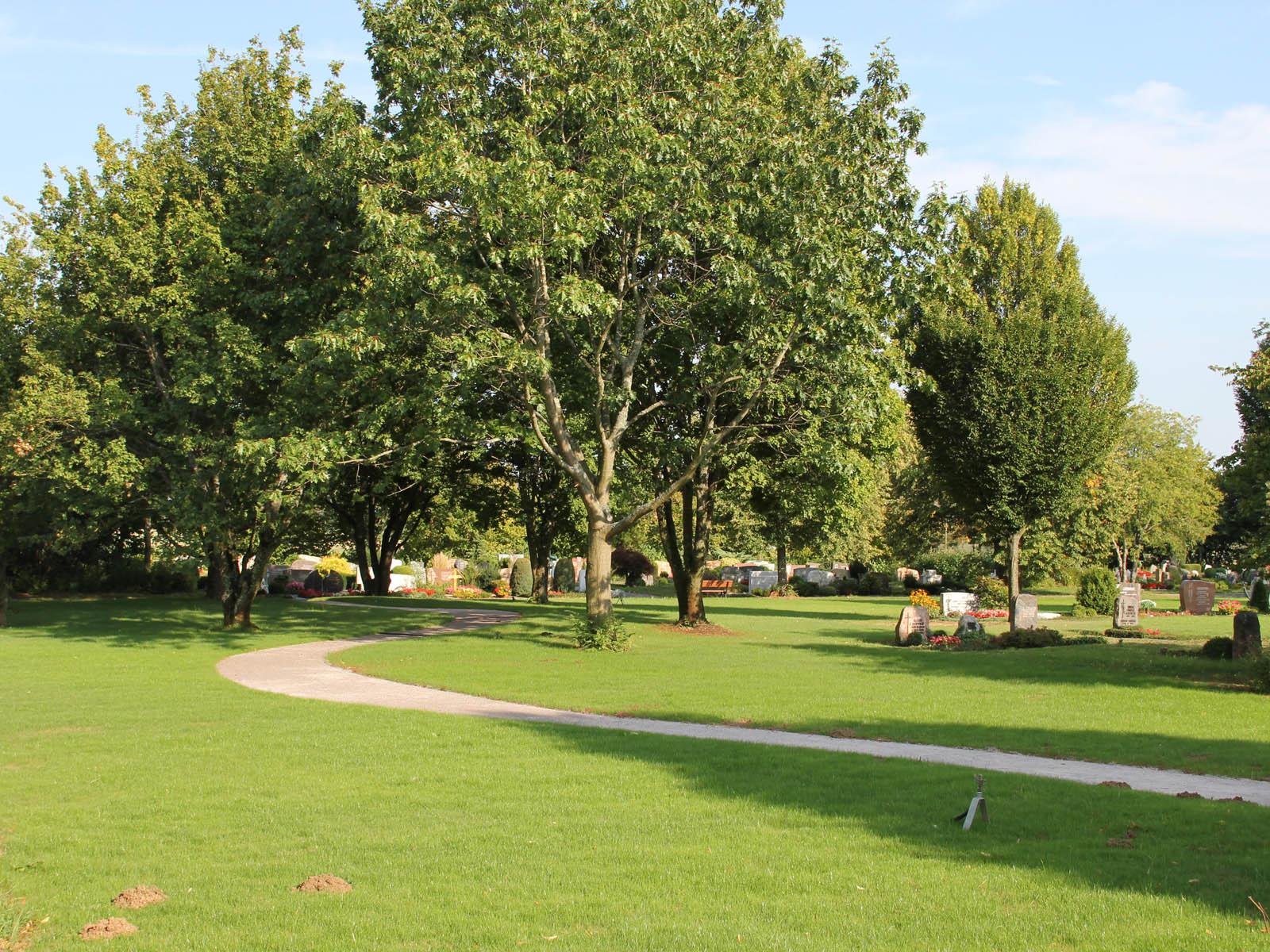 Baumgräber am Friedhof Hägnach