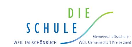 Logo Die Schule